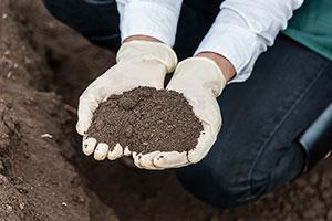 Soil Testing Monterey